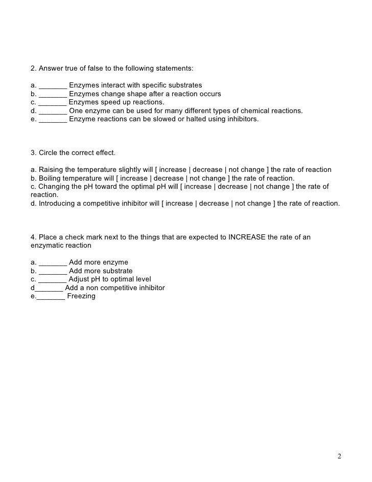 Enzymes Worksheet Answer Key Enzymes Worksheet Solving Quadratic Equations Radical Equations Word Problem Worksheets