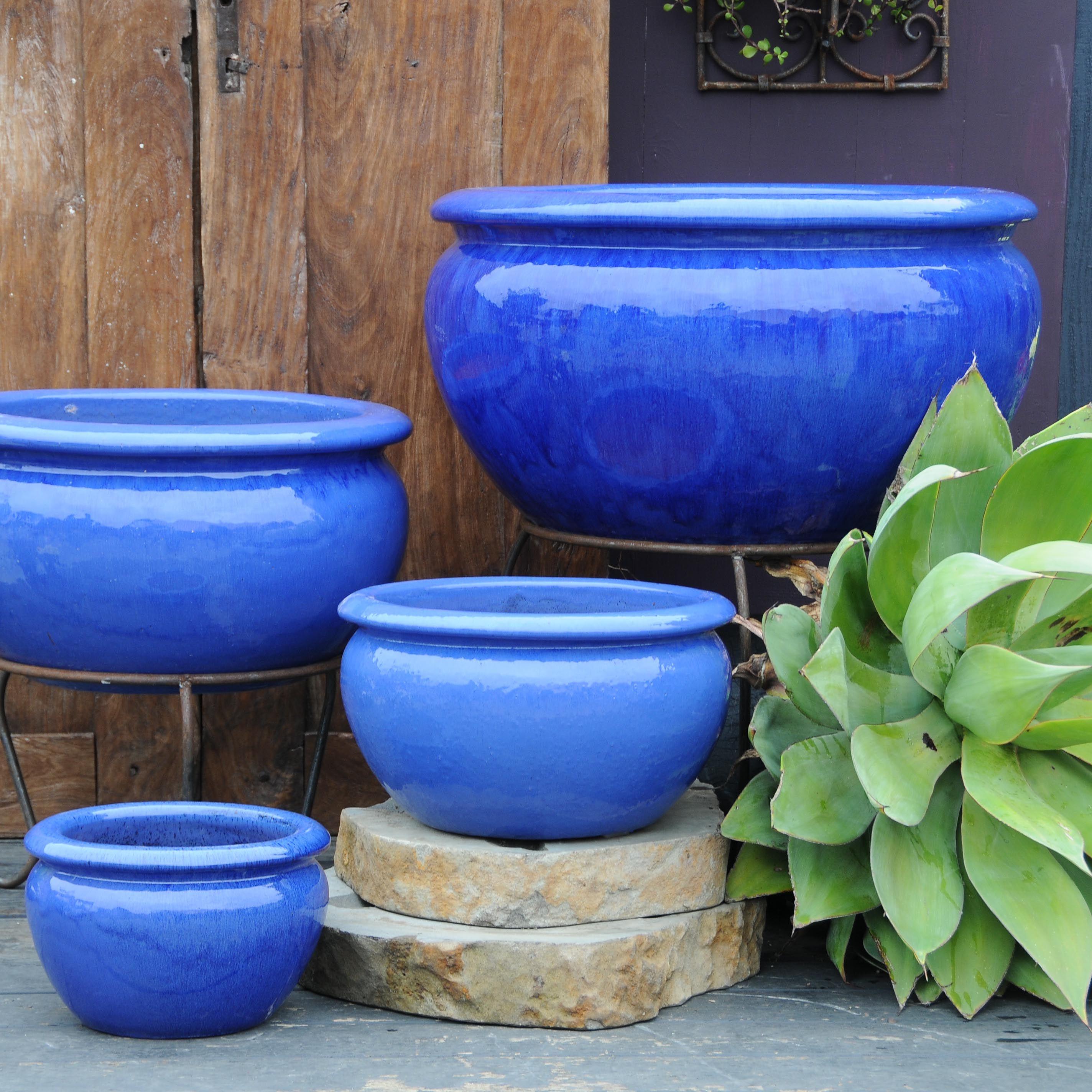 Garden Center Dennis 7 Dees Garden Pottery Plant 400 x 300