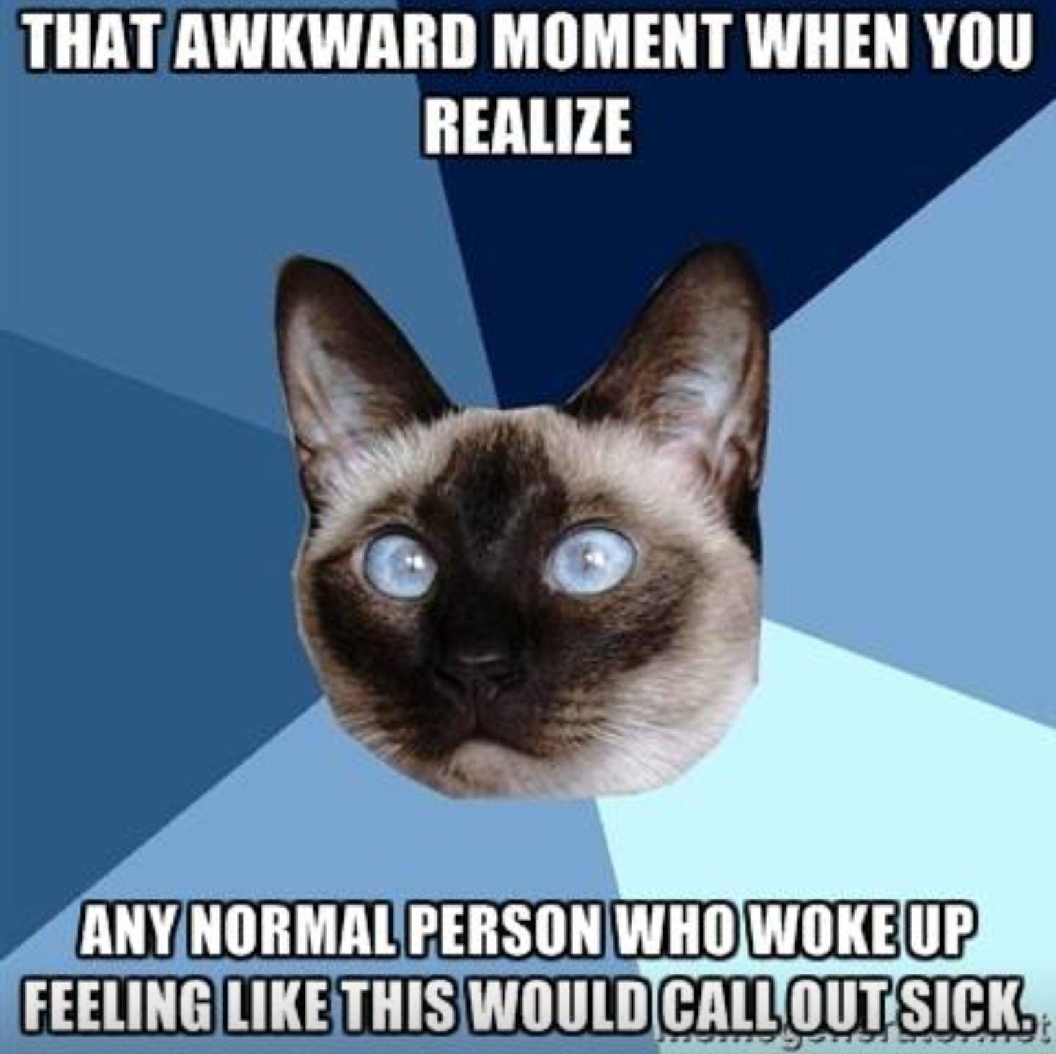 Chronic illness cat understands.