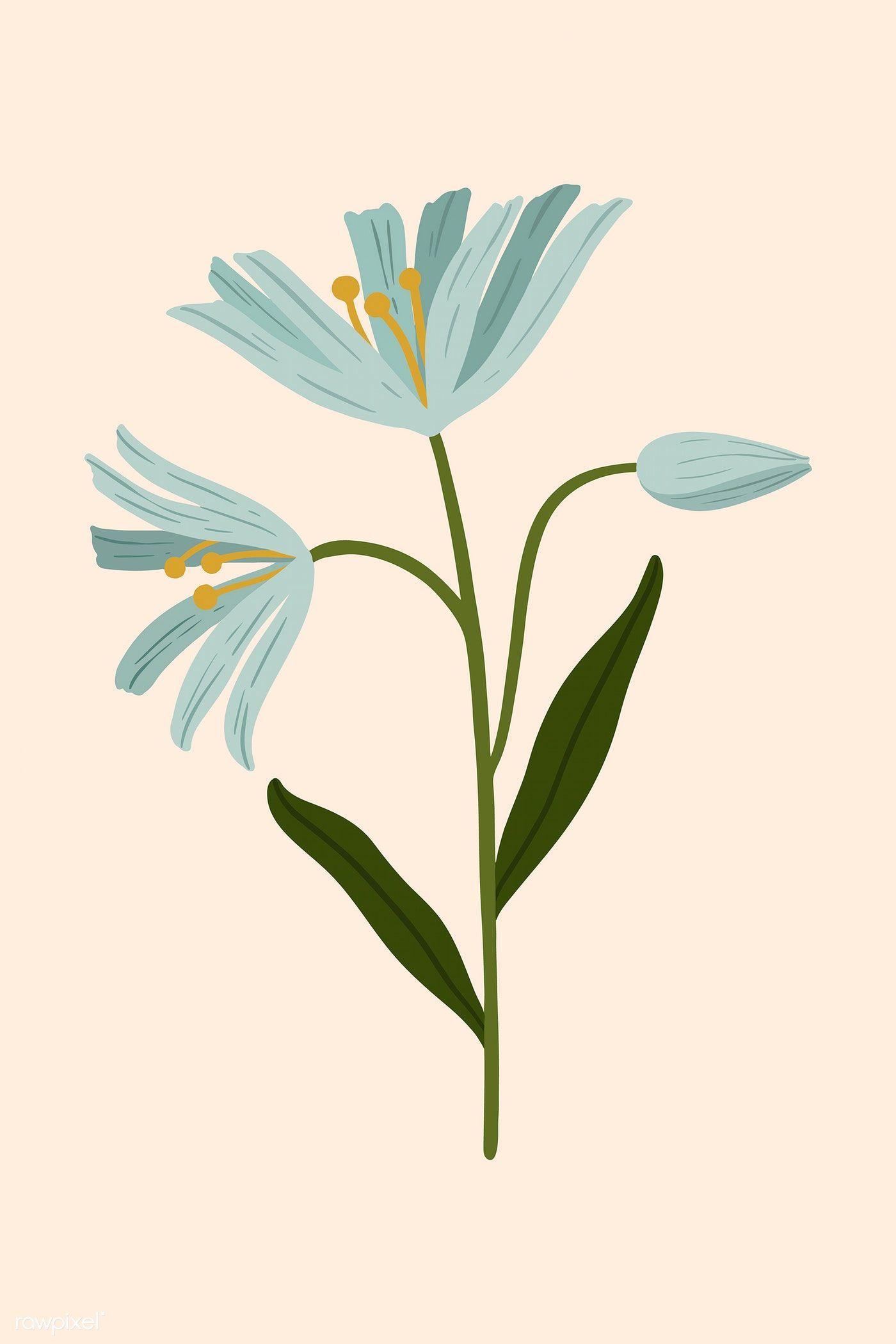 Download free illustration of Blue botanical on a nude background 2022474