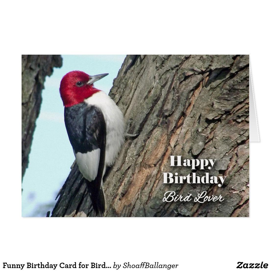 Birds in Flight CUFFLINKS Birdwatcher Twitcher Cruise Formal BIRTHDAY PRESENT