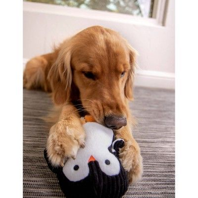 Trustypup Penguin With Silent Squeak Dog Toy Black Plush Dog Toys