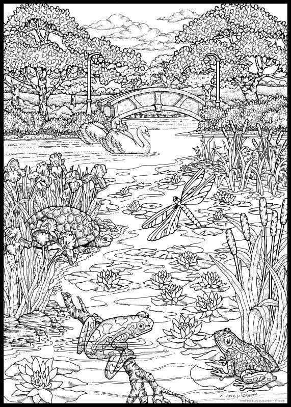 Lake Scene - Colouring | Adult coloring pages, Animal ...