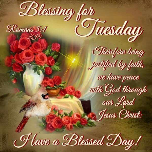 Blessing For Tuesday Have A Blessed Day Good Morning Tuesday Tuesday Quotes Tuesday Images Goo Have A Blessed Day Good Morning Tuesday Good Morning Greetings