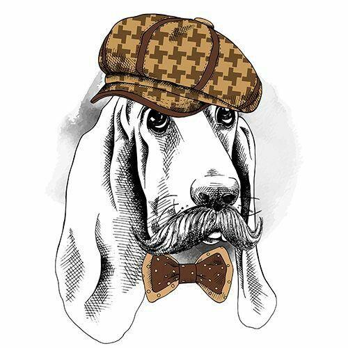 Аксессуар для домашней собаки 7 букв