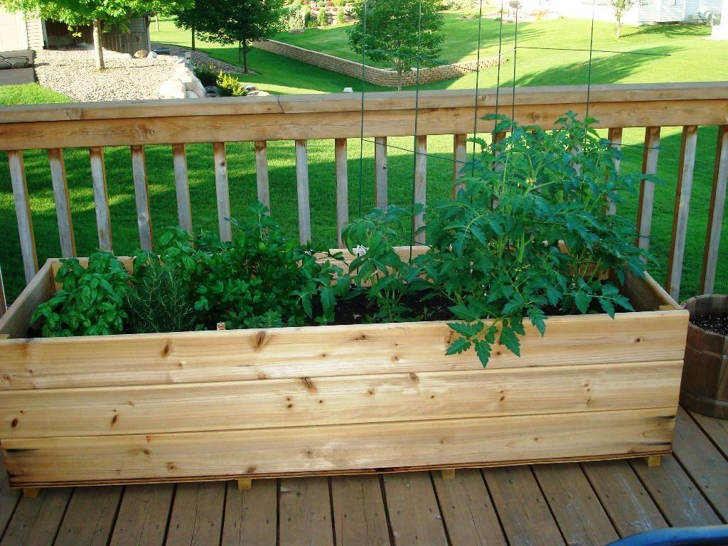 10 Deck Vegetable Garden Ideas, Most Elegant and ...