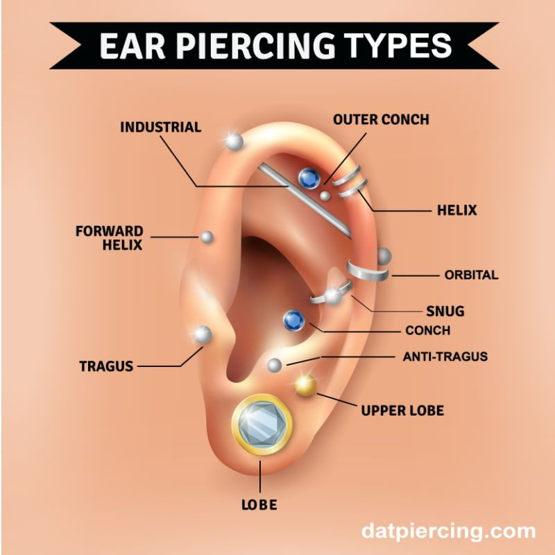 Names Of The Different Types Of Ear Piercings Types Of Ear Piercings Ear Piercing Diagram Piercing Chart