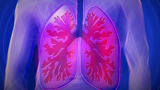 Ratgeber - Detox-Kur: 5 Tricks für eine sauberere Lunge