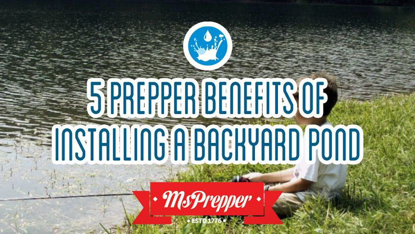 5 Prepper Benefits of Installing a Backyard Pond (With ...