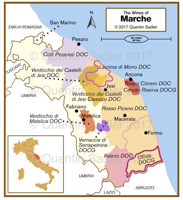 The Marche A Region Awakes Part 1 The Whites Italienischer
