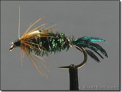 Zug-Bug-side.jpg (400×300) | Fly Tying. | Pinterest | Zug, Fly ...