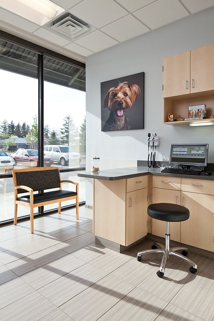 Exam Room At The Newly Opened VCA Central Kitsap In Silverdale WA