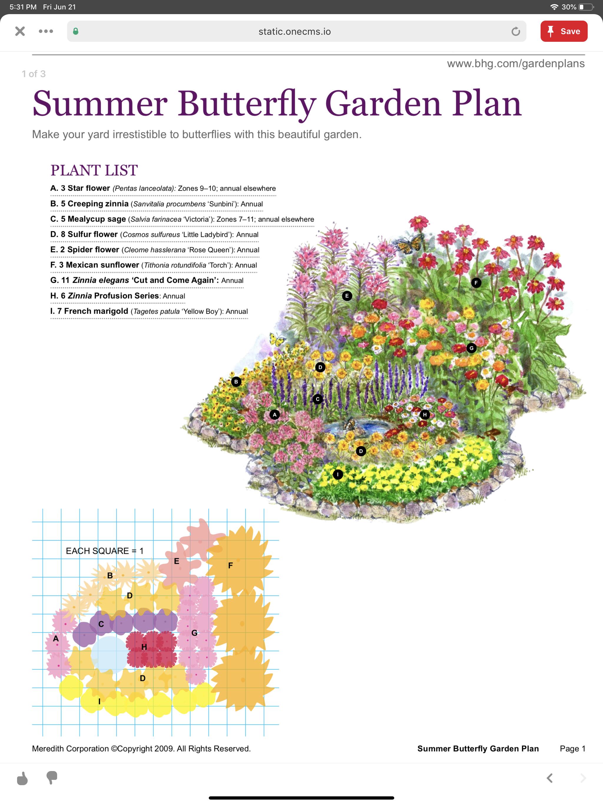 Summer Erfly Garden In 2020