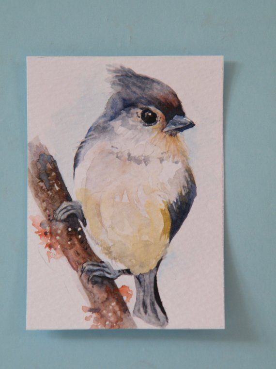 Miniature Watercolor Painting Original Aceo Tufted Titmouse Art