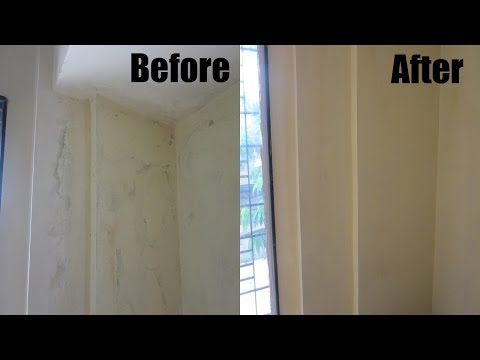Here You Will Find Some Complete Guides To Prevent And Remove Mold From Walls In Bathroom Then You Will Have No W Clean Black Mold Mold Remover Cleaning Mold