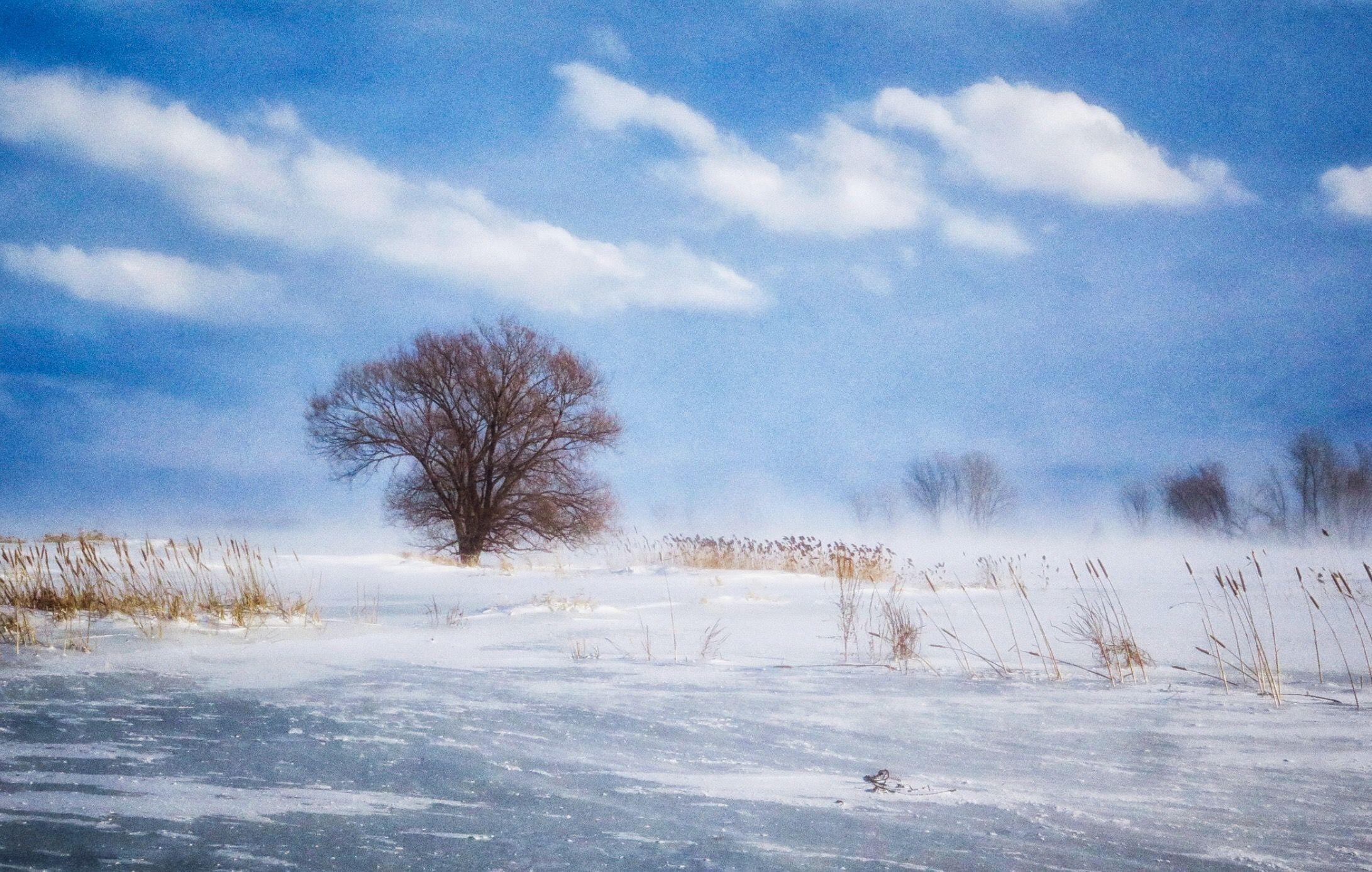 Autant En Emporte Le Vent Gone With The Wind Wind Landscape Photography