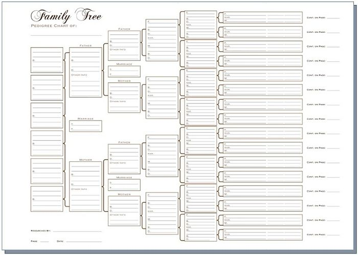A3 Six Generation Family Tree Chart - Pedigree (pack of 3 ...