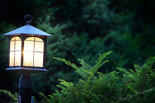 lamppostlight   Flickr - Photo Sharing!