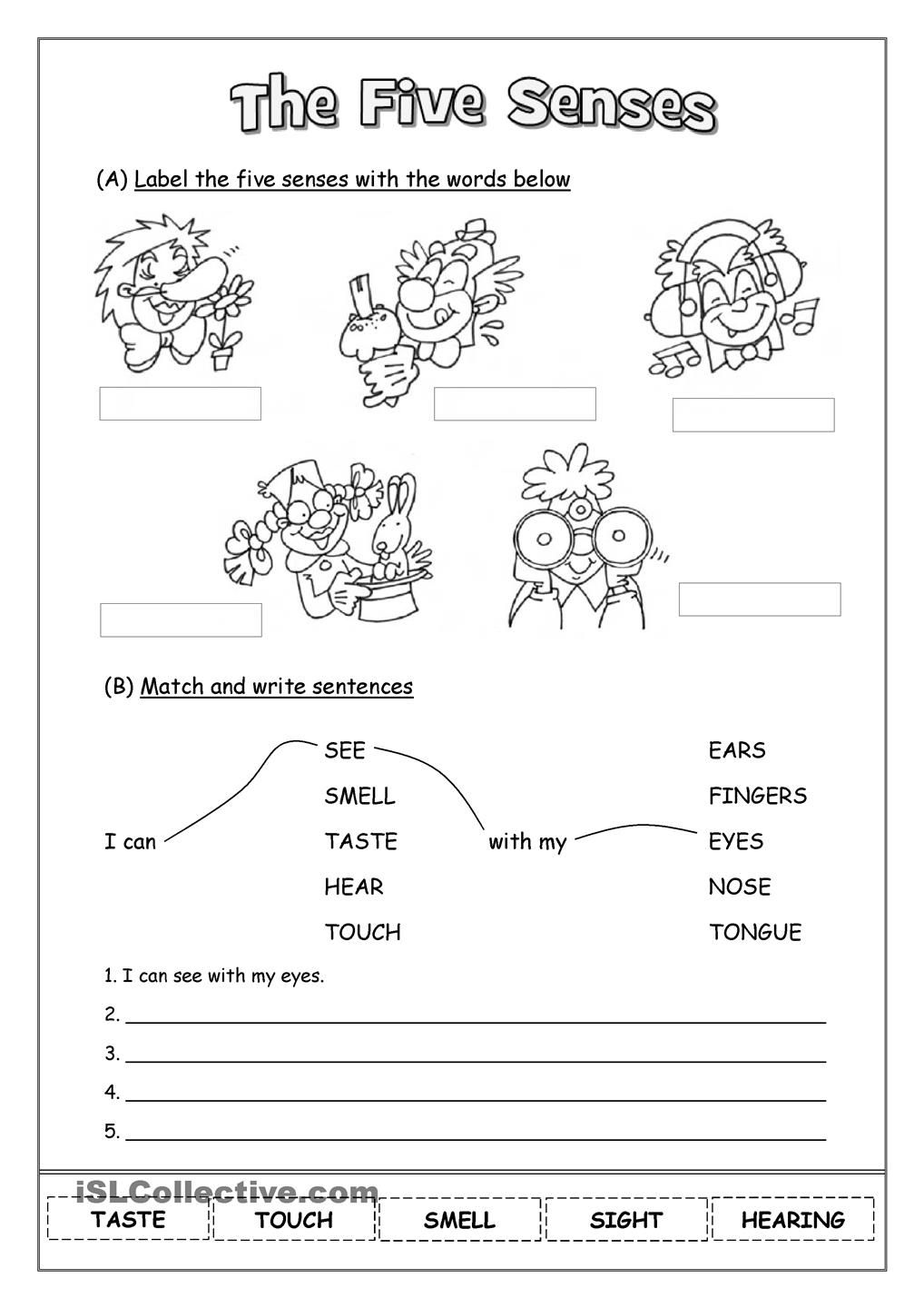 the five senses kids learning 2nd grade worksheets 1st grade worksheets five senses worksheet. Black Bedroom Furniture Sets. Home Design Ideas