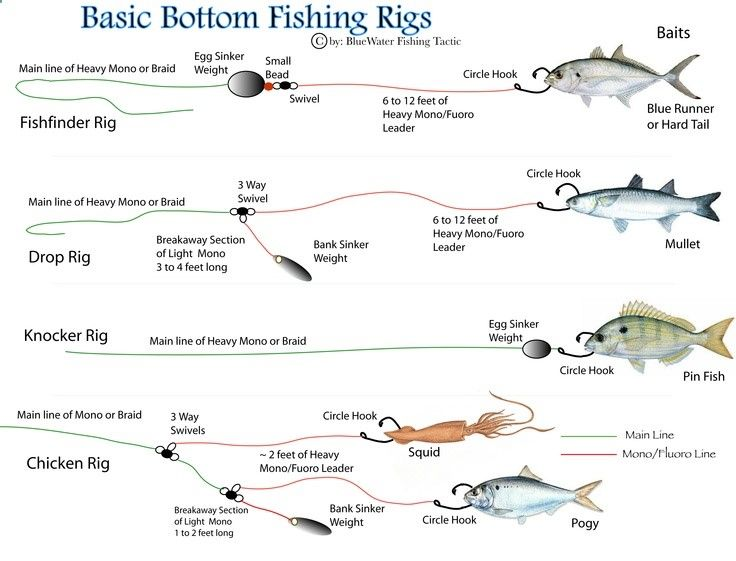 Fishing rig diagrams first there are two basic kinds for Basic fishing rigs
