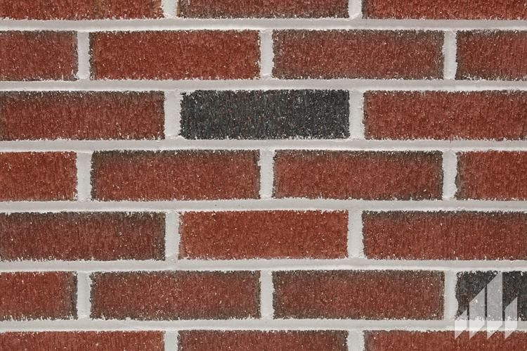 Full Range Barktex Red bricks, Earth tones, Contemporary rug