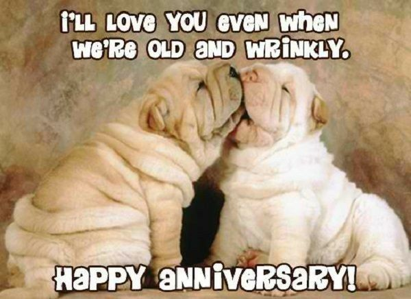 Happy Anniversary Husband Funny Meme : Pin by chrissie du preez on wedding anniversary wishes