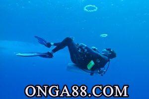 지난무료머니✴【 ONGA88.COM 】✴무료머니무료머니✴【 ONGA88.COM 】✴무료머니 10일 잠적 3개월여 만에 무료머니✴【 ONGA88.COM 】✴무료머니사실상 무료머니✴【 ONGA88.COM 】✴무료머니자수한 부산 해운대 엘시티(LCT) 시행사 이영복(66) 회장이 무료머니✴【 ONGA88.COM 】✴무료머니