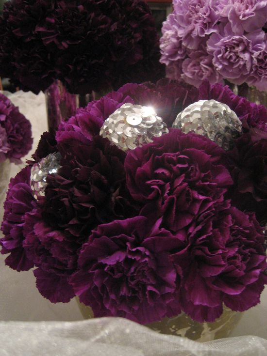 Purple carnations cant believe im saying that i like