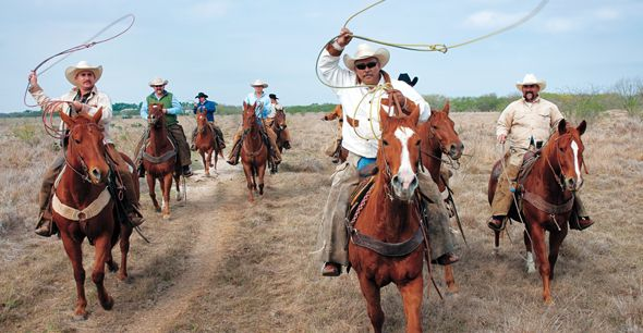 King Ranch Cowboys Watch Over Nearly 25 000 Breeding