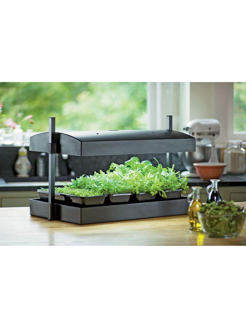 indoor herb garden kit my greens light garden gardeners supply - Indoor Garden Kit