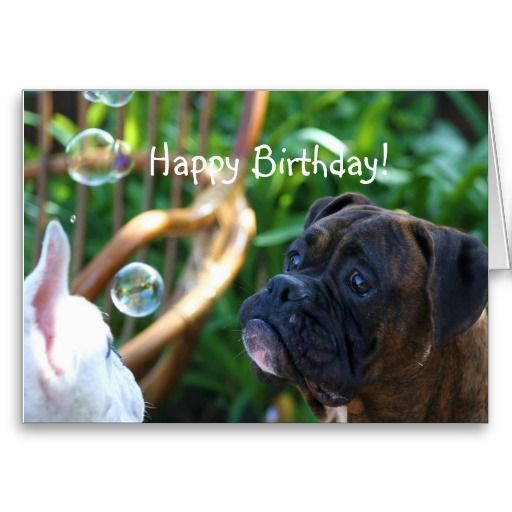 Happy Birthday Boxer Dog Greeting Card Zazzle Com With Images