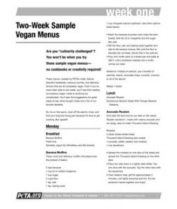 Week Sample Menu Pdf  Books    Menu Pdf Sample Menu