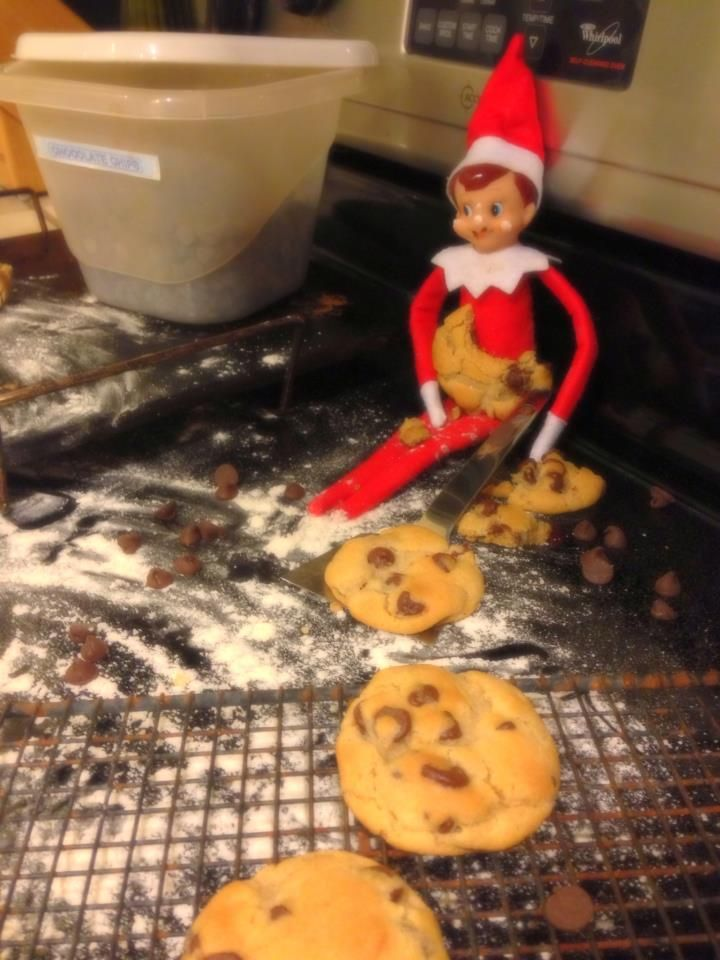 Elf Day 12 I Think Shotty Felt Guilty For His Recent Pranks So He Decided To Make Us Some Cookies Unfortunately Elv Elf Tidying Elf On The Shelf