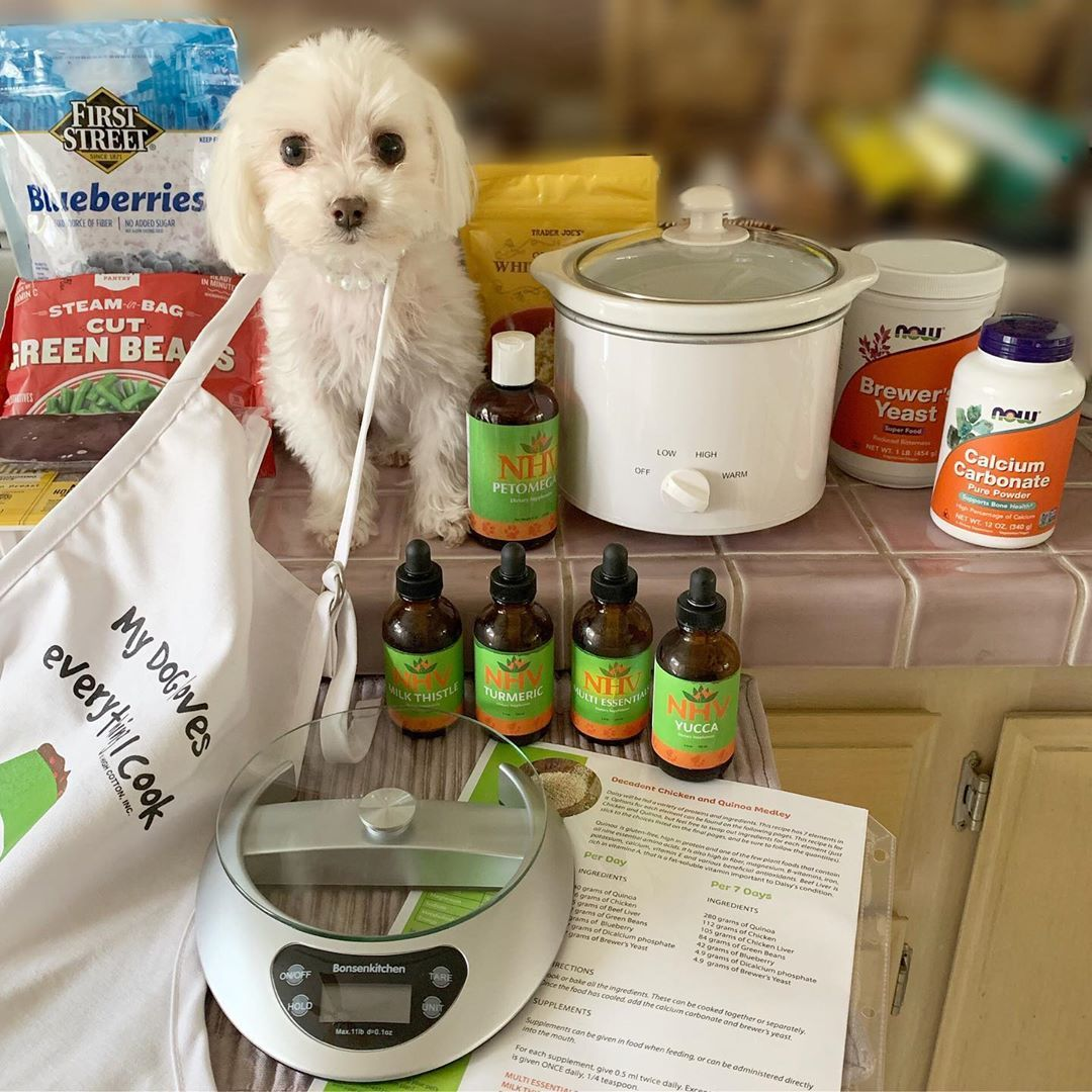 Personalized Veterinary Nutrition Plan For Pets Nutrition Plans Animal Nutrition Nutrition