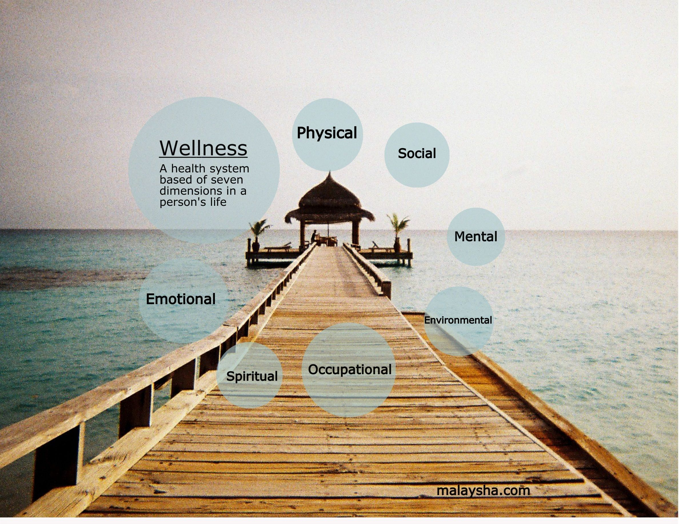 Infographic Depicting The Seven Dimensions Of Wellness