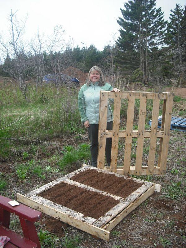Repurposing pallets into raised garden beds Simplify