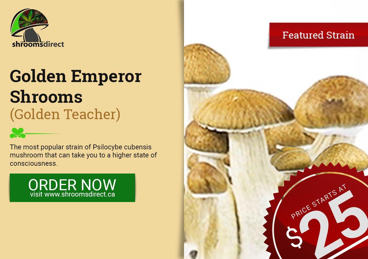 The most popular amongst its kind  #magicmushrooms #shrooms
