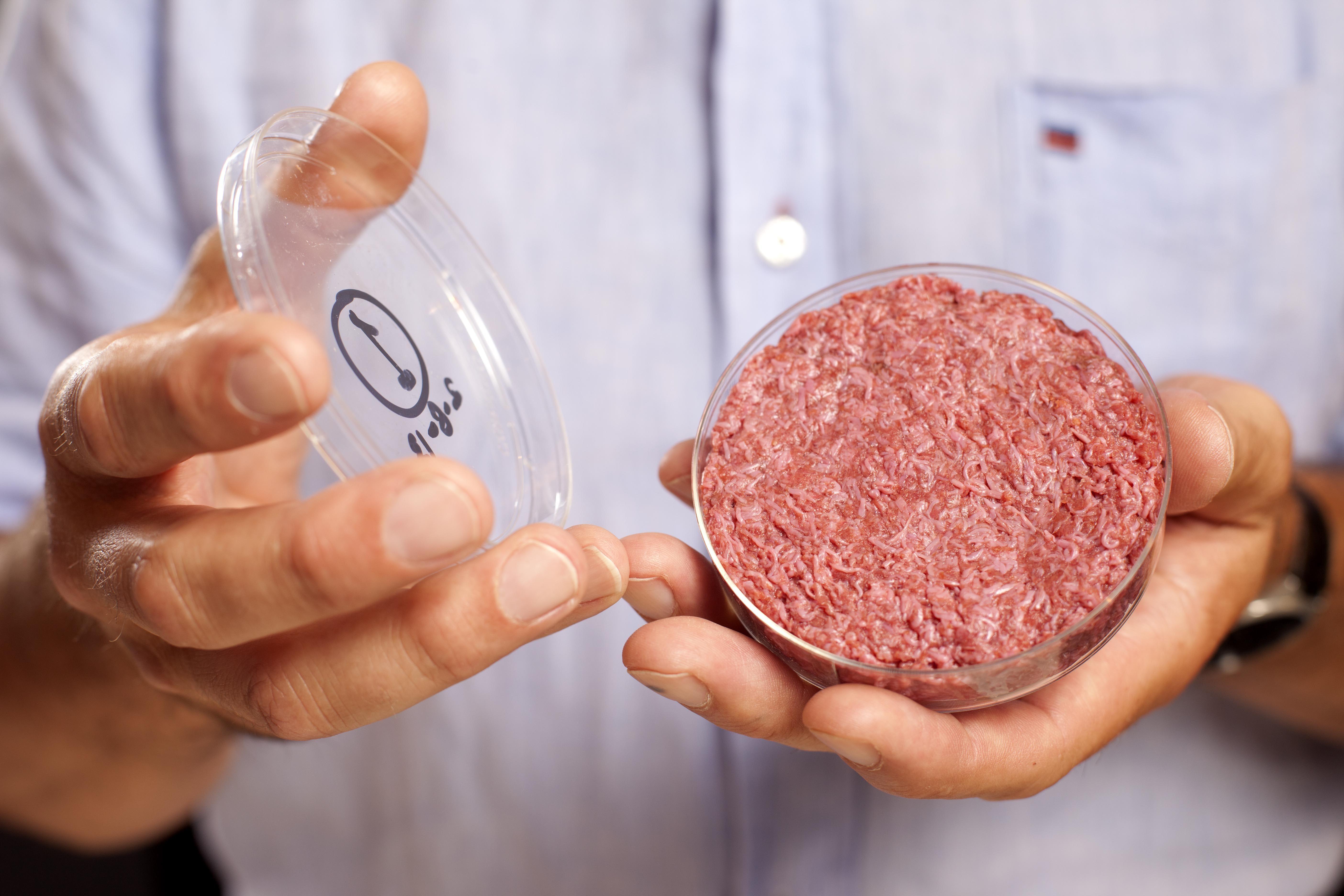 Photo credit: David Parry / PA Wire  Op 5 Augustus 2013 presenteerde Mark Post de allereerste kweekvleeshamburger aan de wereld. Het stukje vlees werd samengesteld uit duizenden stukjes opgekweekt spierweefsel. De productie kostte zo'n 250.000 euro. In London, onder het oog van de wereldpers, werd het stukje kweekvlees geproefd door een groep prominente culinaire recensenten. Hun conclusie: dit is vlees, maar het is nog wel een beetje droog.