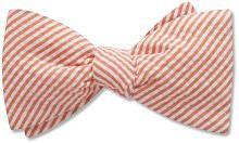 Monteo - bow tie