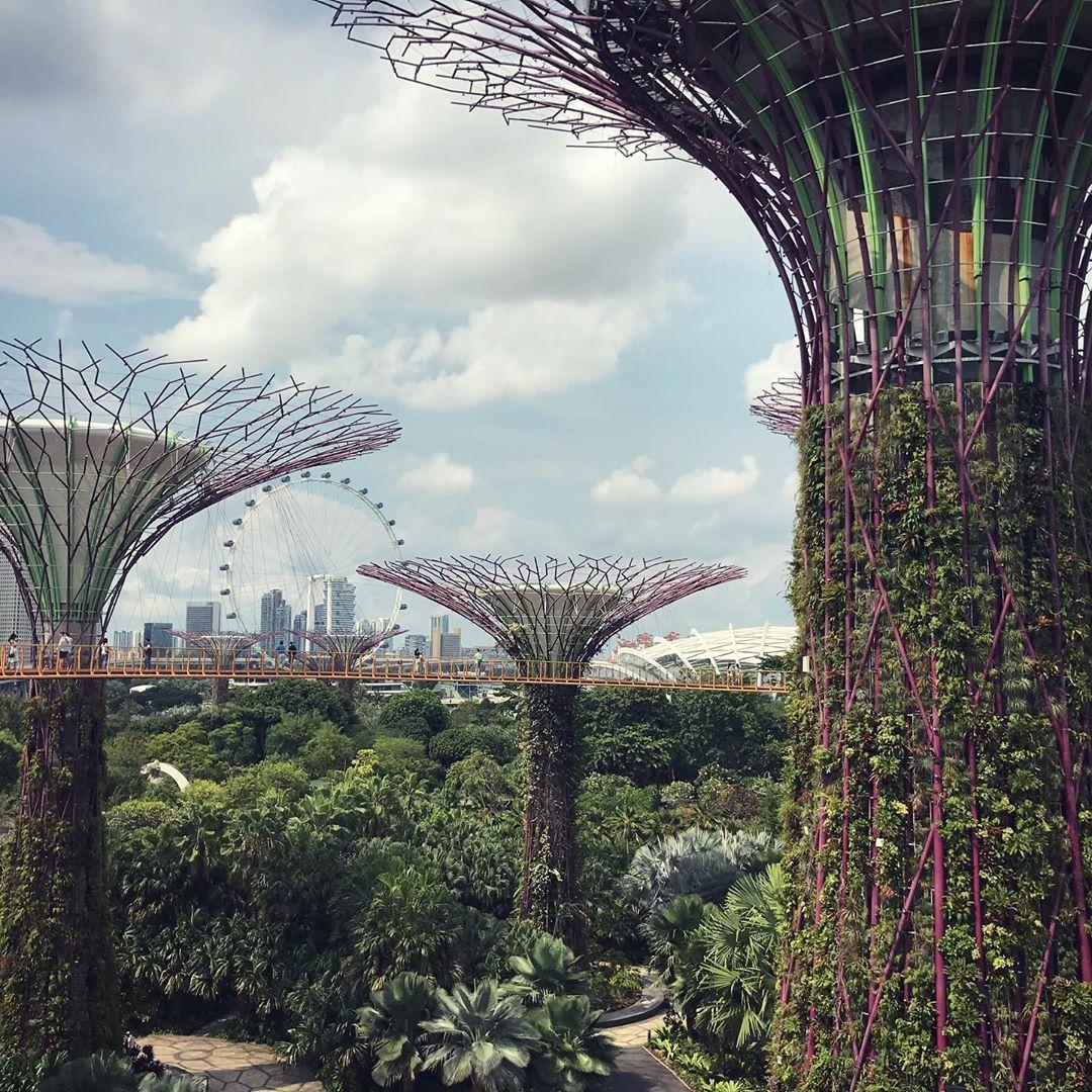singapore singapore🇸🇬 gardensbythebay