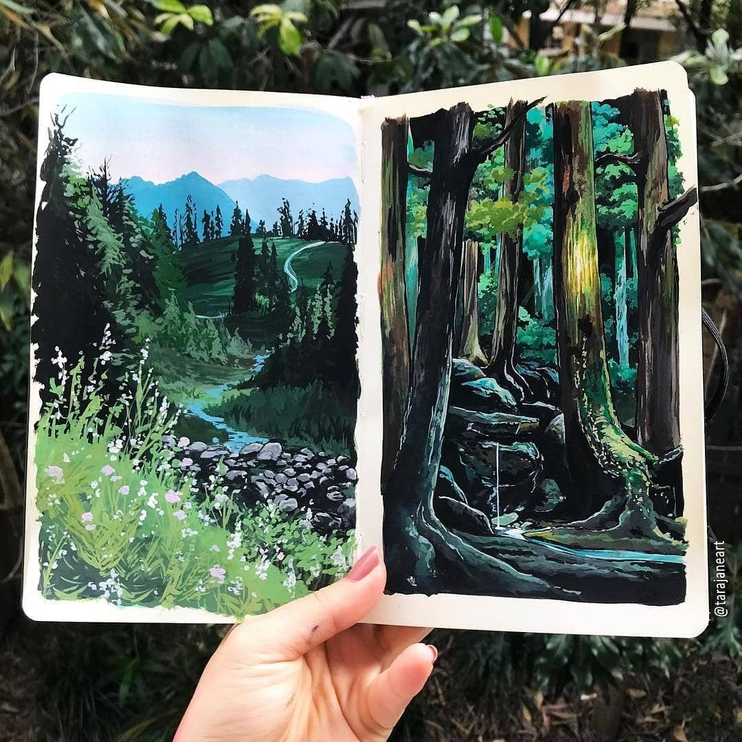 Watercolor Blog On Instagram Watercolorist Tarajaneart