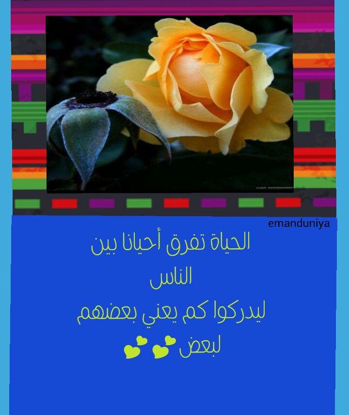 الحياة جميلة بذكر الله Quotes Arabic Quotes Pandora Screenshot
