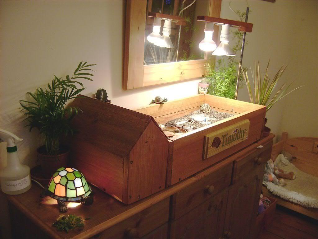 Another tortoise table. & Another tortoise table. | Pets | Pinterest | Tortoise table ... azcodes.com