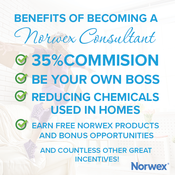 Rebecca Lange - Norwex Independent Sales Consultant: Start your Norwex Business - Join my Team!