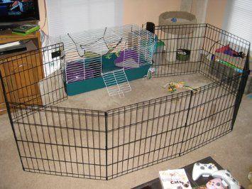 Bunny Pen Idea Indoor Rabbit Pet Bunny Diy Bunny Cage