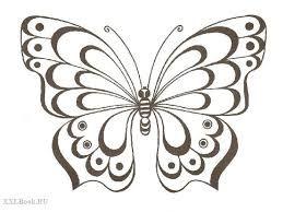 бабочка рисунок контур поиск в Google Illustrator Try