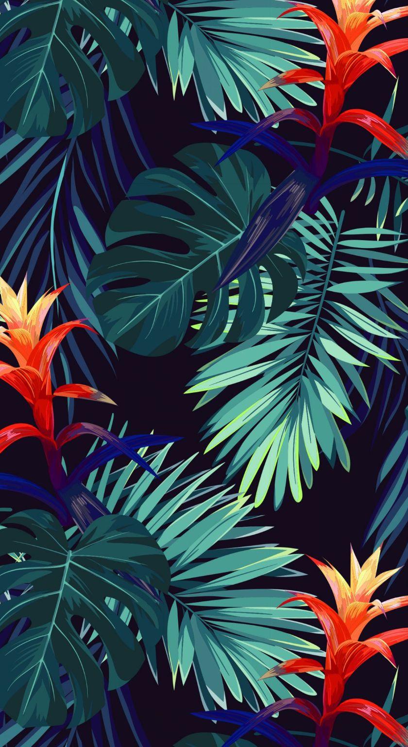 Monstera2 | Настенные картины, Тропические обои