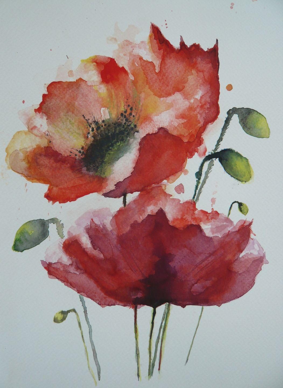 Aquarelle D Un Bouquet De Deux Coquelicots En Fleur Peintures