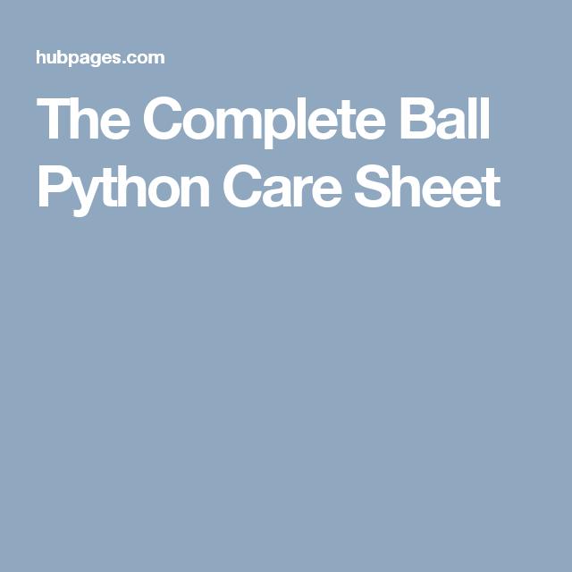 The Complete Ball Python Care Sheet Ball Python Pet Snake Dog