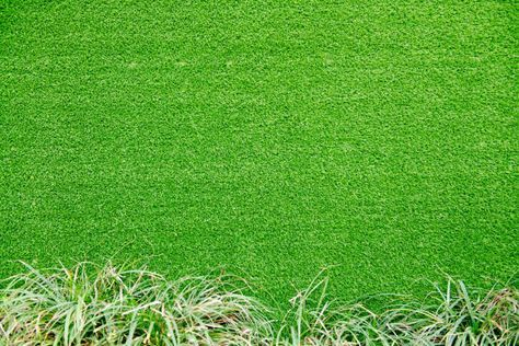 natural grass texture patterned background in golf course turf from rumput hijau natural grass texture patterned